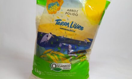 Parceria amplia mix de produtos comercializados pelo Cesol Litoral Sul